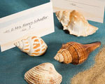 Natural Selections Collection Shell Design Place Card Holders baby favors